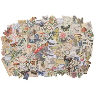 Tim Holtz - «Field Notes»  paquet éphémera 134 pièces