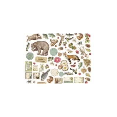 Stamperia - Éphéméra / Chipboard «Forest» ensemble 66 pcs