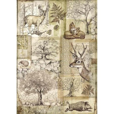 Stamperia - Papier de riz «Deer & Wild Boar»