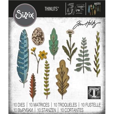 Sizzix - Thinlits Dies de Tim Holtz «Funky Nature» 10 pcs