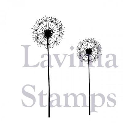 Lavinia - Estampe «Dandelions»
