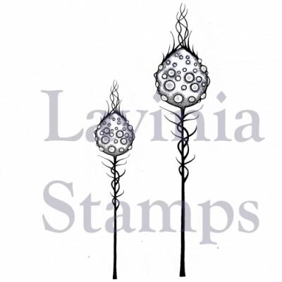 Lavinia - Estampe «Moon Pods»