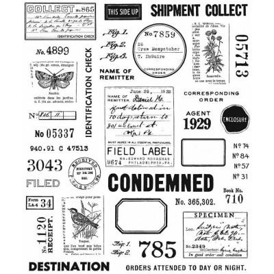 PRÉCOMMANDE- Tim Holtz  -Stampers Anonymous «Field Notes»  6 modèles différents