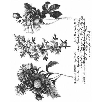 Tim Holtz  -Stampers Anonymous «Flower Shop»  4 modèles différents
