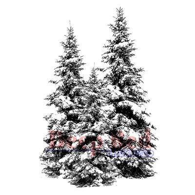 "Deep Red - Estampe «Winter Pines» 2"" X 3"""