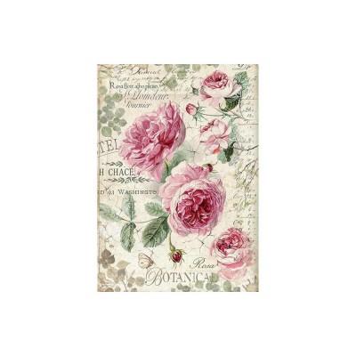 Stamperia - Papier de riz «Botanic English Roses»