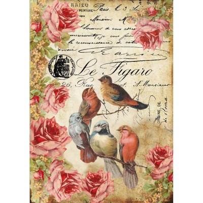 Stamperia - Papier de riz «Le Figaro Birds»