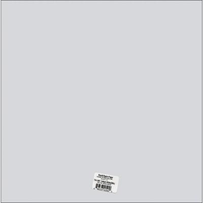 "Bazzill -Vellum «Blanc» 12"" X 12"" 29lb"