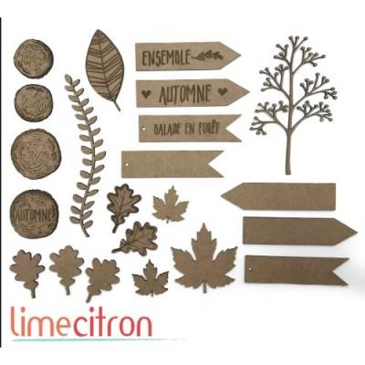 Lime Citron - Chipboard «Méga kit automne»