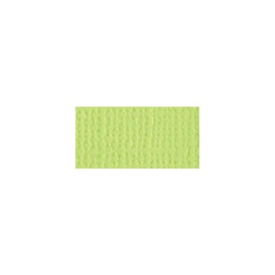 "Bazzill Mono Cardstock 12""X12"" Limeade"