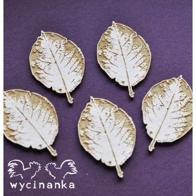 Wycinanka - The look of nature - Feuilles