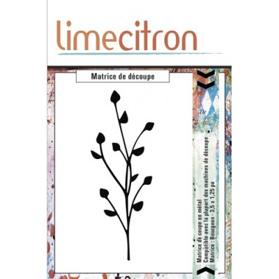 Lime Citron - Die «Bourgeons»