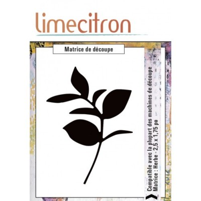 Lime Citron - Die «Herbe»